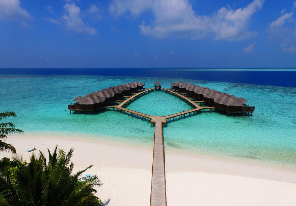 Fihalhohi Island Resort Solo Traveler Offer