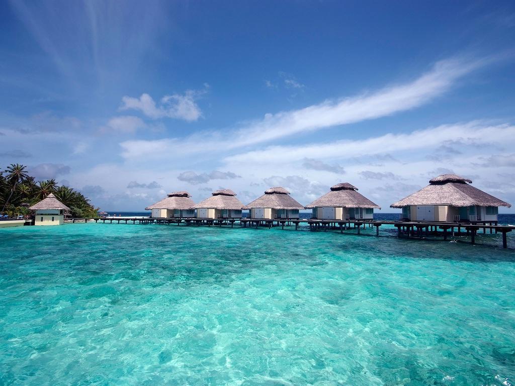 Ellaidhoo Maldives by Cinnamon Honeymoon Offer
